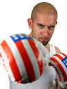 Free Boxer With Red Gloves Royalty Free Stock Images - 2429549