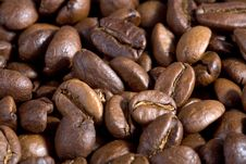 Free Good Smelling Coffeebeans Stock Images - 2422534