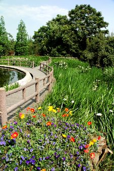 Free City Marsh Park Royalty Free Stock Image - 2425706