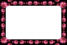 Free Floral Frame Royalty Free Stock Images - 2426739