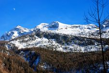 Free Champoluc Mountains Royalty Free Stock Image - 2429076