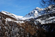 Free Champoluc Mountains Royalty Free Stock Image - 2429106