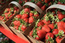 Free Berry Basket Royalty Free Stock Photo - 2429255