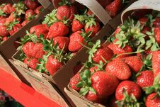 Free Red Berry Baskets Royalty Free Stock Photos - 2429258