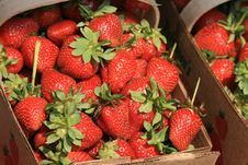 Free A Basket Of Strawberries Royalty Free Stock Photo - 2429285