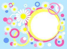 Free Circles Chamomiles Royalty Free Stock Photos - 2429828