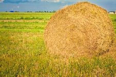 Free Harvested Field With Straw Bales In Summer Stock Image - 24206791