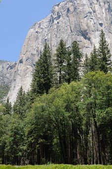 Free El Capitan In Yosemite Royalty Free Stock Photography - 24210727