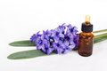 Free Aromatherapy Essential Oil Stock Photography - 24220782