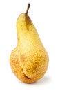 Free Single Pear Stock Photos - 24221323