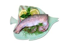 Rainbow Trout Royalty Free Stock Photography