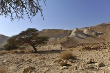 Judea Desert Landscape. Royalty Free Stock Photography