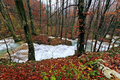 Free Clear Stream And November Foliage In The Mountains Royalty Free Stock Image - 24236976