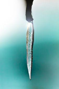 Free Ice Drop Stock Photo - 24232600