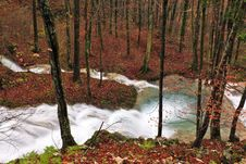 Free Clear Stream And November Foliage In The Mountains Royalty Free Stock Images - 24236999
