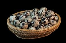 Free Quail Eggs Stock Image - 24238891
