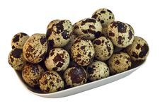 Free Quail Eggs Royalty Free Stock Photos - 24238948