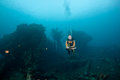 Free Diver And Wreck Royalty Free Stock Photos - 24241878