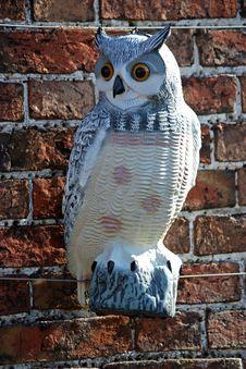 Ornamental Owl. Stock Photo
