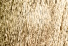 Free Wood Texture Background Stock Photo - 24244080