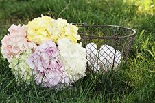 Free Hydrangeas And Country Eggs Stock Photo - 24246860