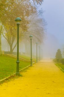 Free Fog In The Park Royalty Free Stock Photos - 24247928