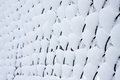 Free Snow Mesh Fence. Royalty Free Stock Photos - 24258428