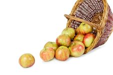Free Apples Pour Out From A Basket Stock Image - 24250111