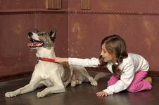 Free Little Girl With Dog Royalty Free Stock Photography - 24259507