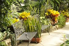 Free Relax Garden Royalty Free Stock Image - 24263376