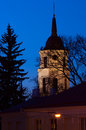 Free Vilnius Cathedral Tower At Night Stock Image - 24283851