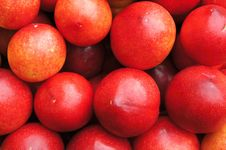 Heaps Of Round Plums Stock Images