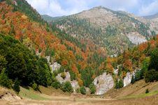Free Autumn In Carpathian Mountains Royalty Free Stock Photography - 24292197
