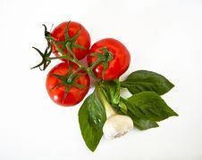 Free Fresh Tomatoes, Basil, Garlic Stock Photo - 24295450