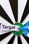 Free Target Concept Stock Photo - 24296570