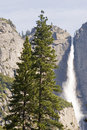 Free Upper Yosemite Falls Royalty Free Stock Image - 2437086
