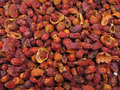 Free Dried Hips. Royalty Free Stock Image - 2438916