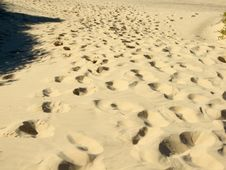 Free Footprints Royalty Free Stock Photos - 2431938