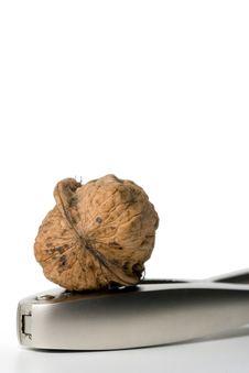 Walnut On Nutcracker Royalty Free Stock Photo