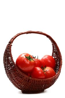 Free Fresh Tomatoes Royalty Free Stock Images - 2433409