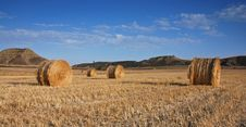Free Field Of Hay Bales Stock Image - 2434011