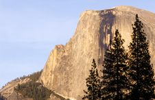 Free Half Dome And Tree Silhouette Stock Photos - 2437243