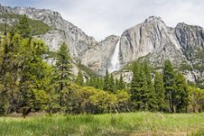 Free Yosemite Fields Of Green Royalty Free Stock Image - 2437326