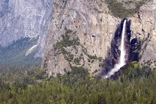 Free Bridalveil Falls And Forest Stock Photography - 2437552
