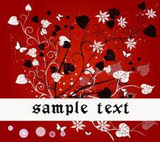 Free Floral   Frame - Vrctor Stock Photos - 2439713