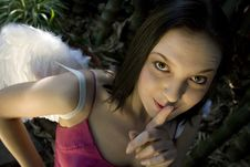 Free Fairy Shhh Royalty Free Stock Image - 2439946