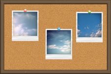 Free Cork Board With Photo Cards Stock Images - 24304294