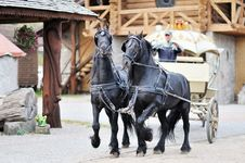 Free A Carriage With Black Horses Royalty Free Stock Image - 24307786
