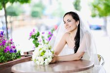 Free Happy Young Bride Stock Images - 24308764
