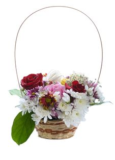 Free Flower Basket Stock Photography - 24313832